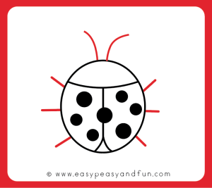 draw ladybug drawing easy step legs scenery antennae clipartmag bit