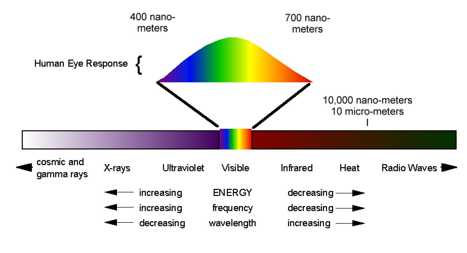 Electromagnetic Spectrum Drawing For Kids