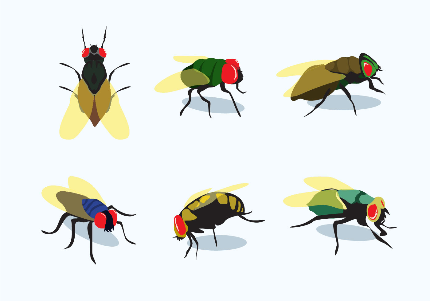 hight resolution of 1400x980 firefly vectors