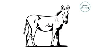 horse simple drawing draw clipartmag