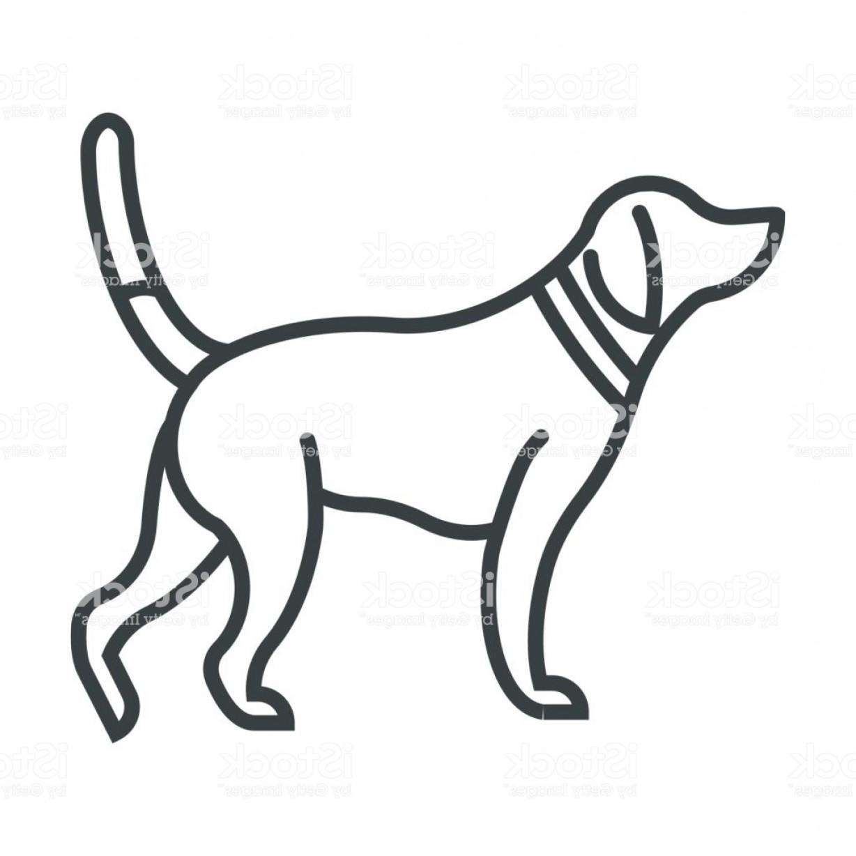 Hunting Dog Drawing