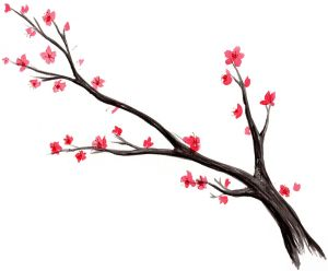 blossom cherry tree japanese watercolor drawing branch blossoms tattoo simple chinese realistic birds silhouette trees clipart later sakura clipartmag quotes