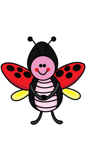 ladybug drawing draw easy step clipartmag