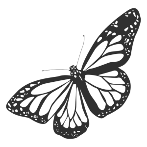 butterfly monarch silhouette outline icon transparent side drawing svg flat tattoo flying vector sketch shirt vexels illustration luthfiannisahay clipartmag clipground