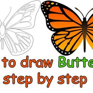 butterfly drawing side monarch easy clipartmag