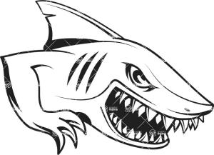shark drawing draw cartoon simple step clipart clipartmag