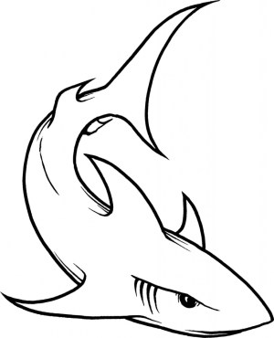 sharks shark easy drawing drawings line basic clipart draw simple cool goblin coloring clipartmag mouth fin getdrawings