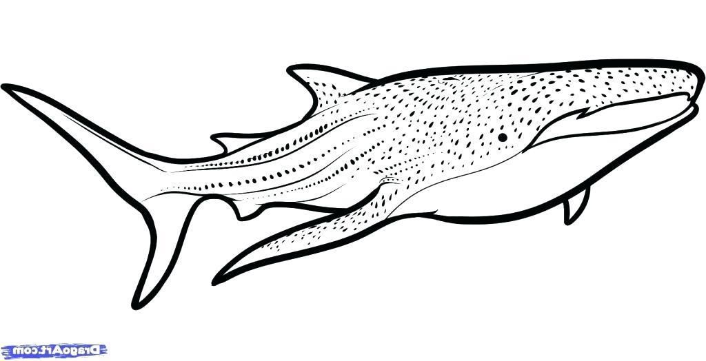 small hammerhead shark cutout