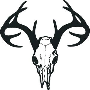 deer head drawing simple silhouette scroll template patterns saw clipartmag