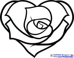rose simple drawing step drawings clipartmag