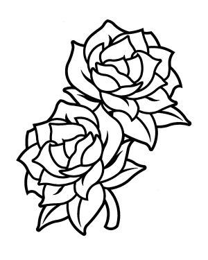 gardenia drawing flower rose drawings vector skull simple flowers gardenias line draw clip border clipartmag favorite coroflot getdrawings mathilde open