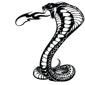 snake cobra drawing king clipart head realistic drawings side cliparts tattoo forums simple face background crown easy draw clip sketch