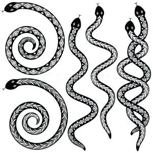 drawing snake simple serpent southside serpents clipartmag