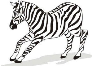 zebra drawing running coloring pages bolt template easy line templates simple printable colouring animal kid clipartmag painting zebras rasta toddlers