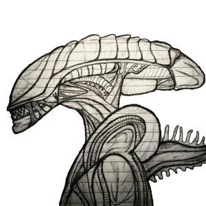 alien drawing xenomorph clipartmag