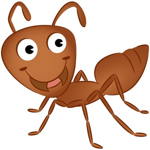 small resolution of 900x900 ant clipart orange