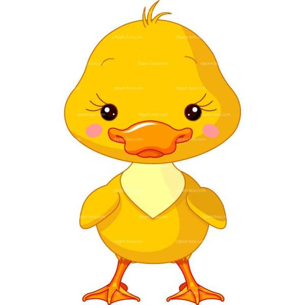 baby duck clipart free