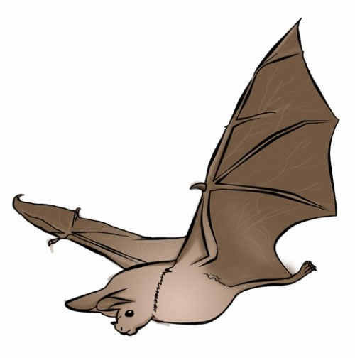 small resolution of bats clipart