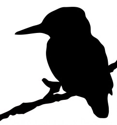 1853x1920 kingfisher bird silhouette clipart free stock photo [ 1853 x 1920 Pixel ]
