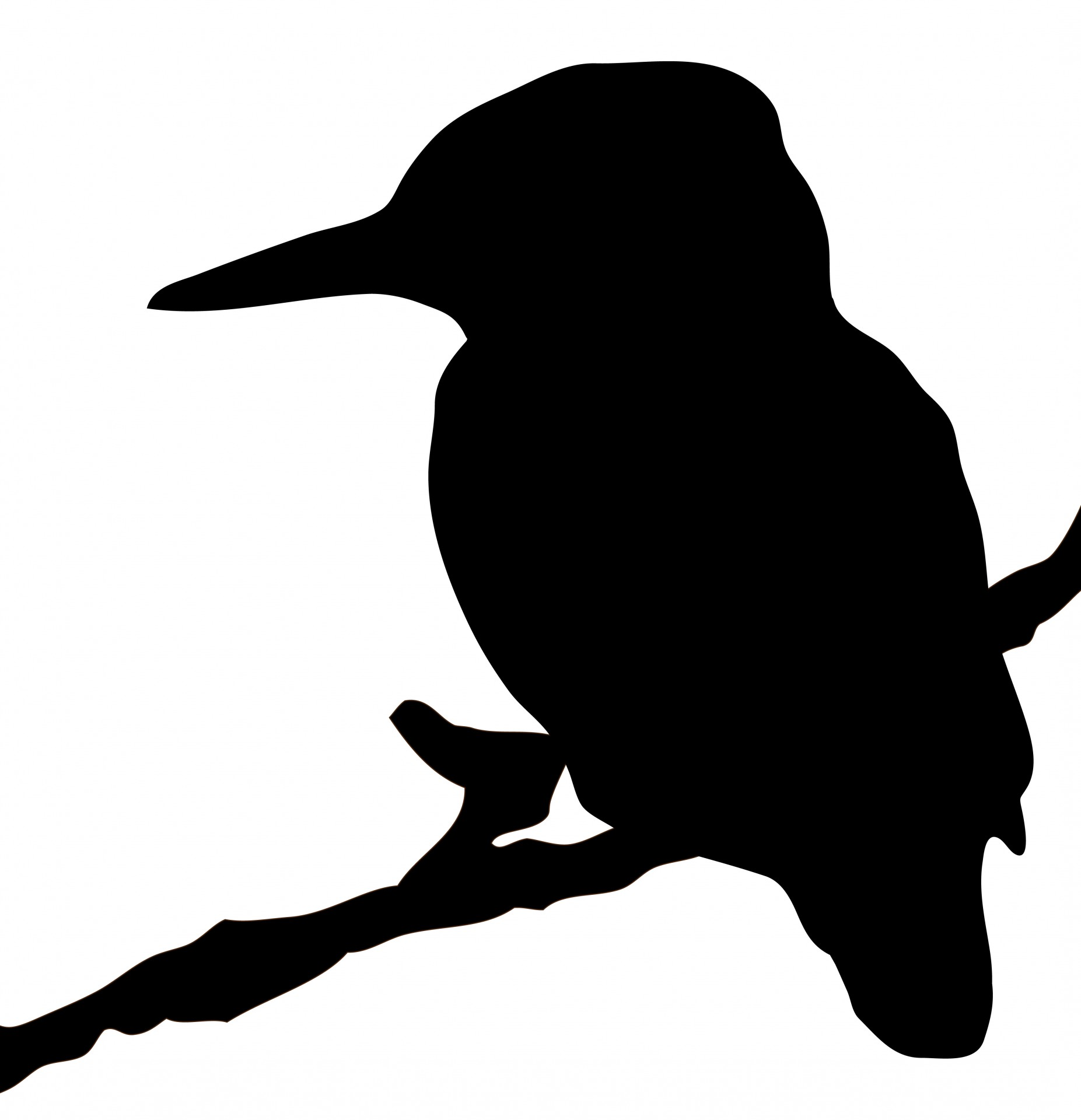 hight resolution of 1853x1920 kingfisher bird silhouette clipart free stock photo