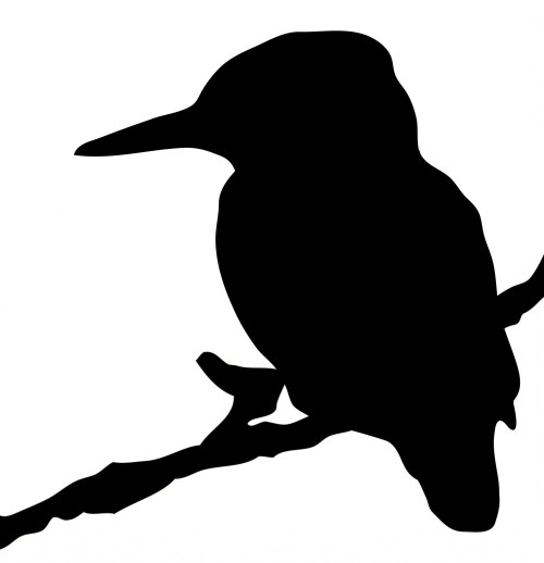 small resolution of 1853x1920 kingfisher bird silhouette clipart free stock photo