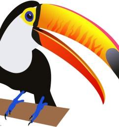 999x822 birds animals clipart gallery free downloads by [ 999 x 822 Pixel ]