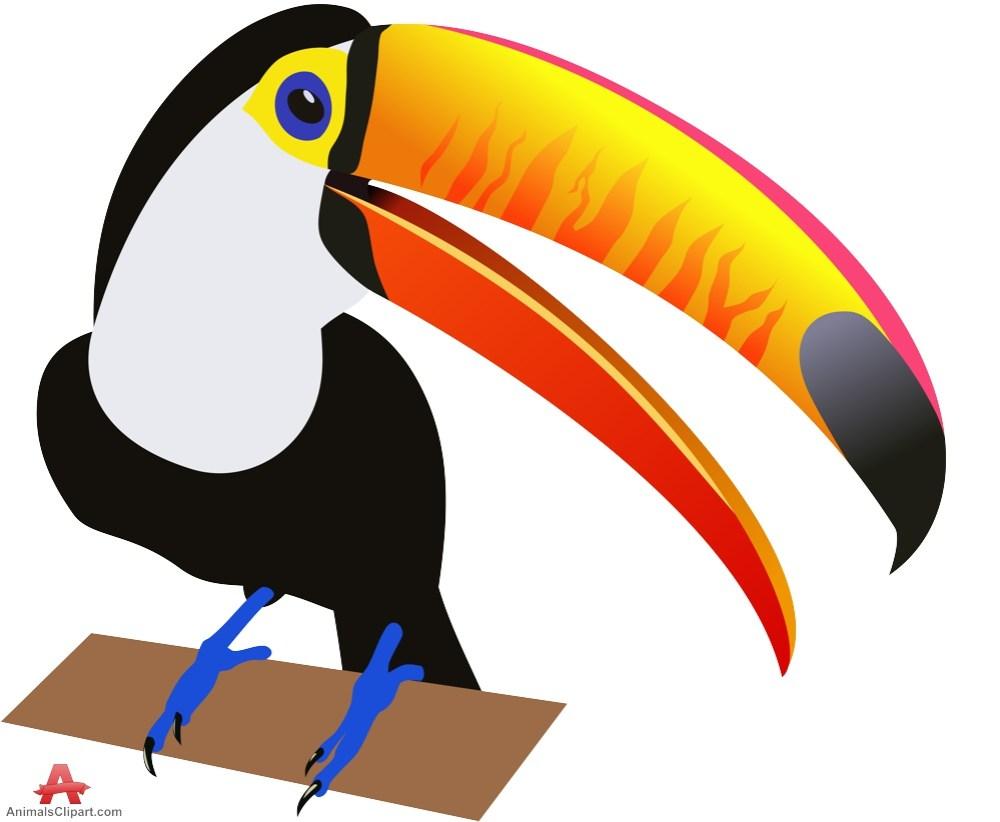 medium resolution of 999x822 birds animals clipart gallery free downloads by