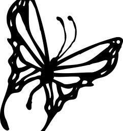 1202x1525 15 monarch butterfly pictures black and white compilation black [ 1202 x 1525 Pixel ]