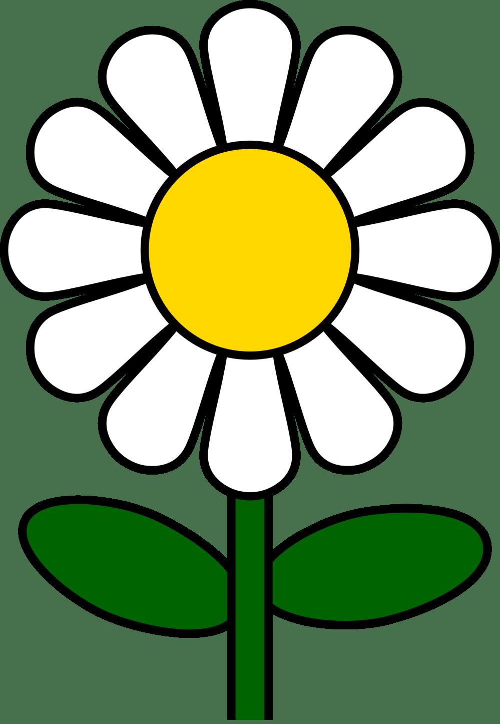 medium resolution of 1969x2849 top 71 daisy clip art