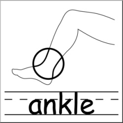 body ankle clip parts clipart abcteach clipartmag