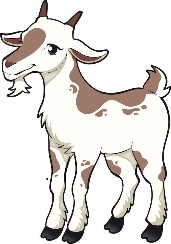 boer goat clipart free