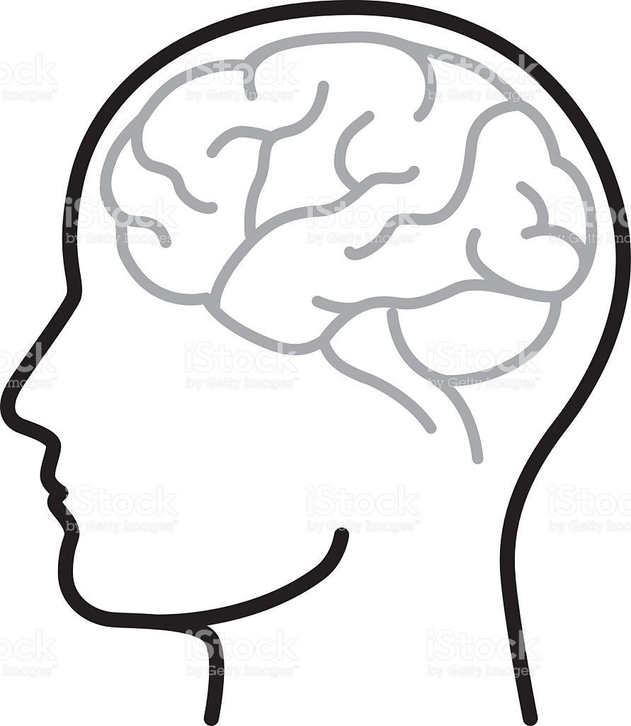 hight resolution of 891x1024 brain clipart vector art