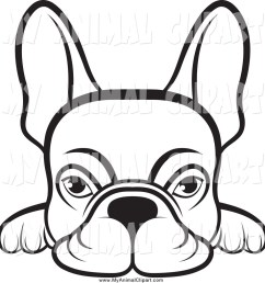 1024x1044 clip art of a lineart frenchie dog looking over a surface by lal [ 1024 x 1044 Pixel ]