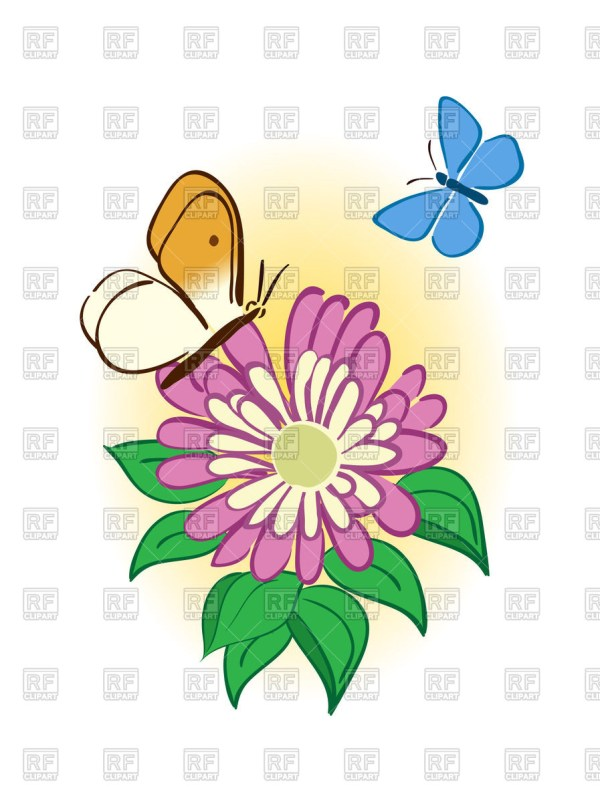 butterflies and flowers clipart