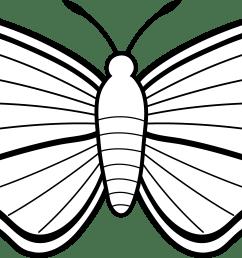 6978x3573 black and white moth design [ 6978 x 3573 Pixel ]