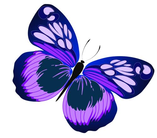 small resolution of 1559x1372 blue and purple butterfly png clipartu200b gallery yopriceville