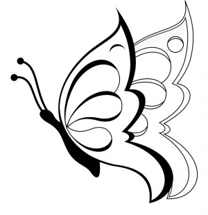 butterfly drawing simple easy sketch drawings draw clipart pencil flowers paintingvalley head aesthetic clip sketches step child clipartmag getdrawings cobra