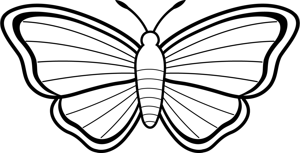 medium resolution of 6629x3394 butterfly outlines clipart