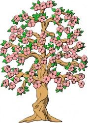 cherry tree clipart blossom cartoon clipartmag
