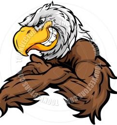 940x940 cartoon eagle vector image by chromaco toon vectors eps [ 940 x 940 Pixel ]
