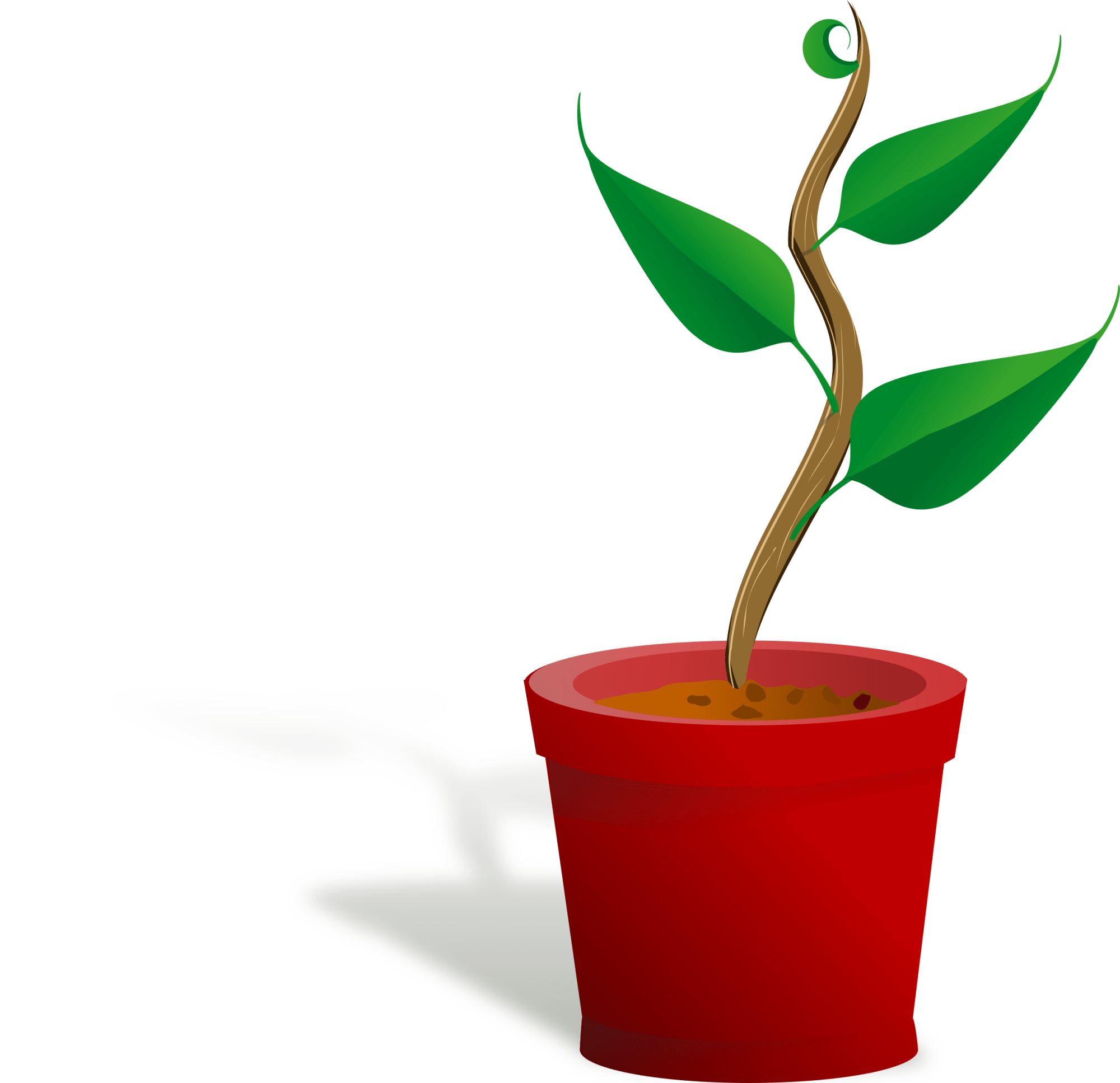 hight resolution of 2400x2322 plant clipart small plant