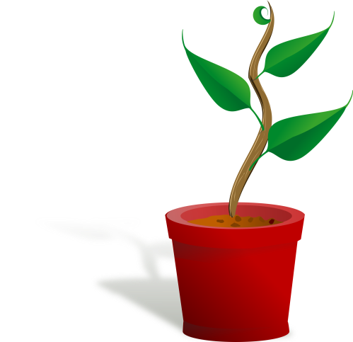 small resolution of 2400x2322 plant clipart small plant