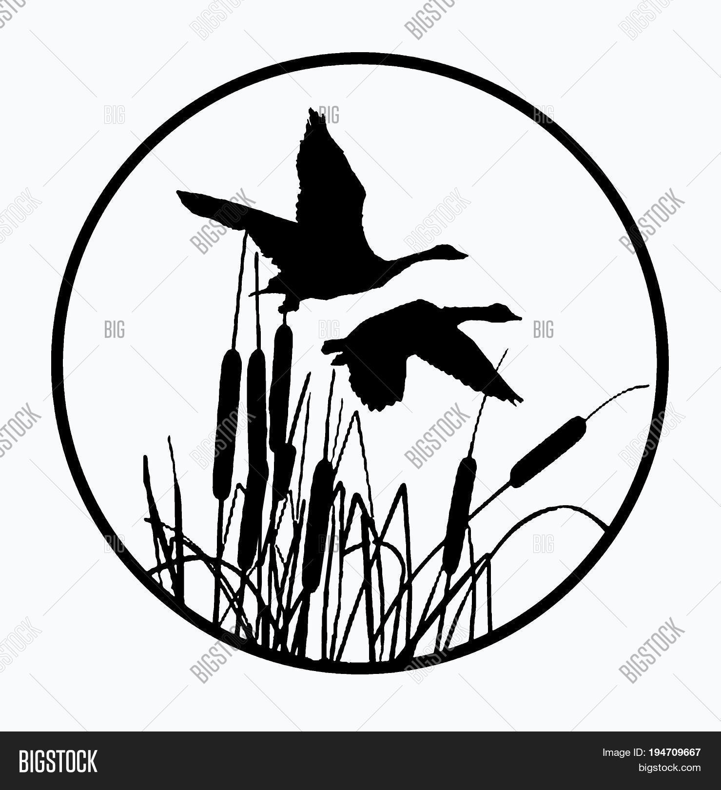 Cattails Clipart