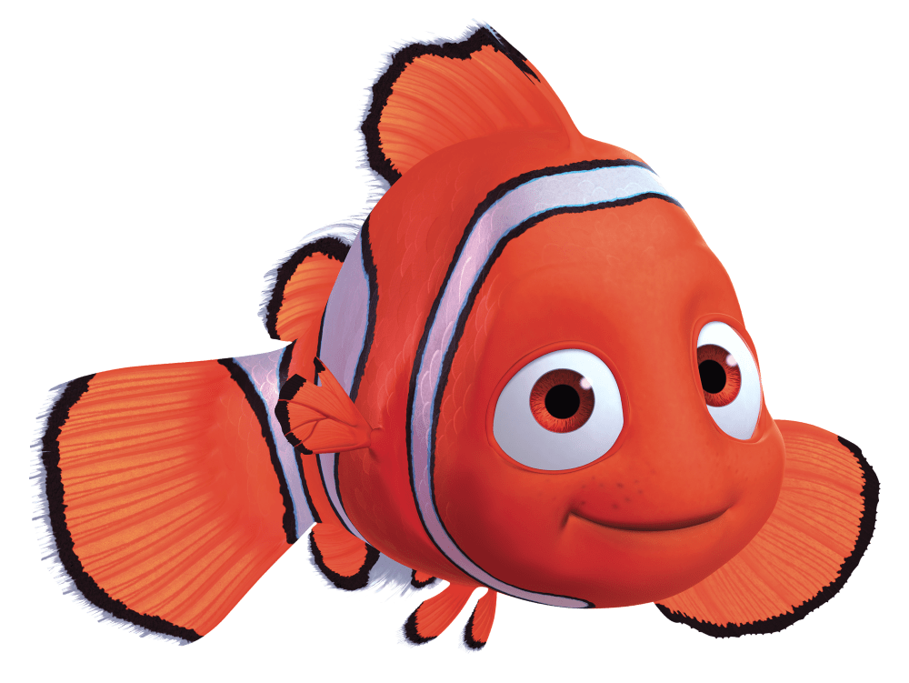medium resolution of 2844x2136 clownfish clipart finding nemo
