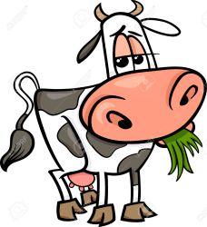 cow clipart eating farm clipartmag