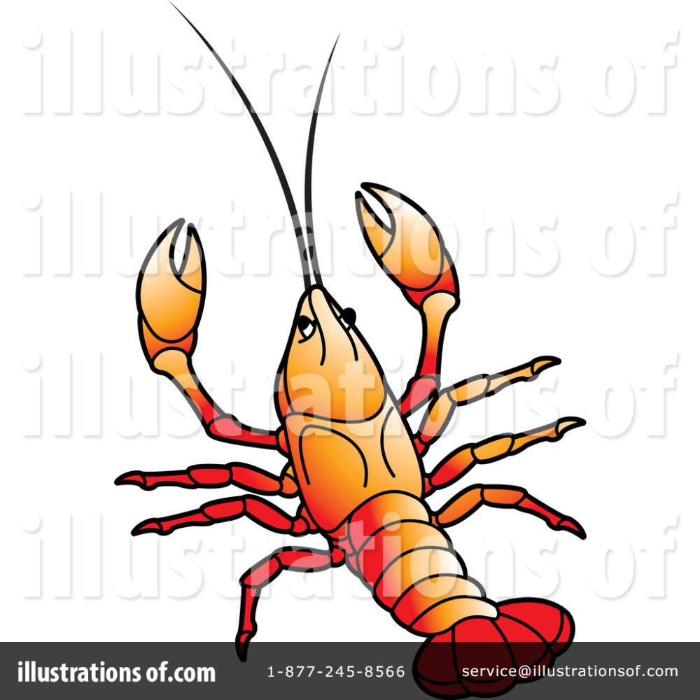 medium resolution of crayfish clipart free download best crayfish clipart jpg 1024x1024 crawfish clipart printable