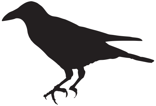 small resolution of 8000x5453 crow outline clip art at taco zone valve wiring diagram