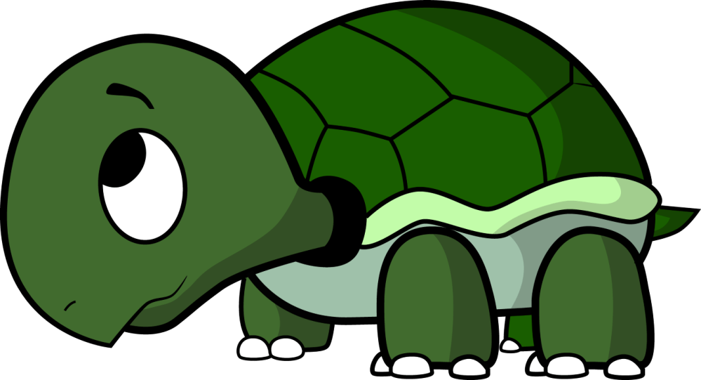 medium resolution of 1366x740 cute turtle transparent background png mart
