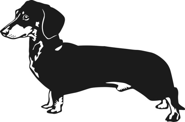 dachshund outline clipart free