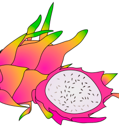 1280x800 15 spectacular dragon fruit clipart [ 1280 x 800 Pixel ]